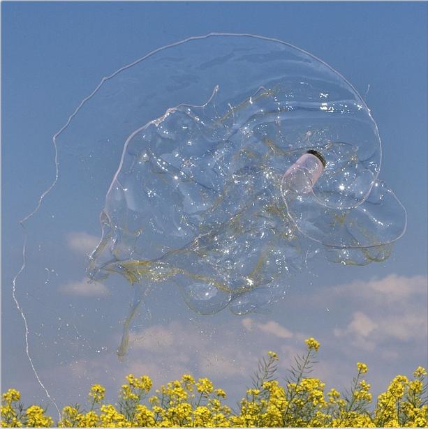 Imagens de Manon Wethlij